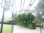 Ogden Amphitheater