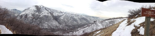 Wasatch Panoramic