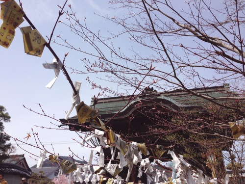 Nagano, Japan, April 2014