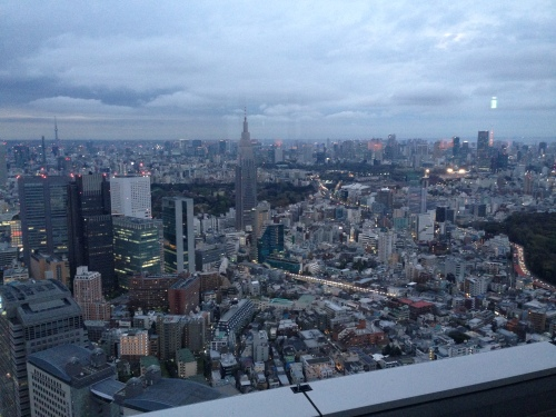 Tokyo, as Seen from the Park Hyatt in Shinjuku, April 2015